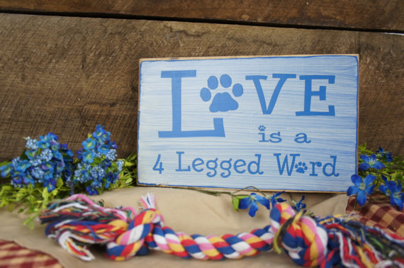 Express Your Love - Love is a 4 Legged Word l Expressions N more